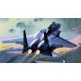 Academy 12213 Сборная модель самолета F-15K (1:48)